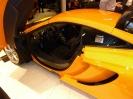 McLaren Feb 2013_7